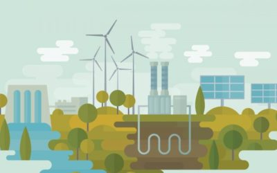 Are you doing your bit to hit the net zero target by 2050?