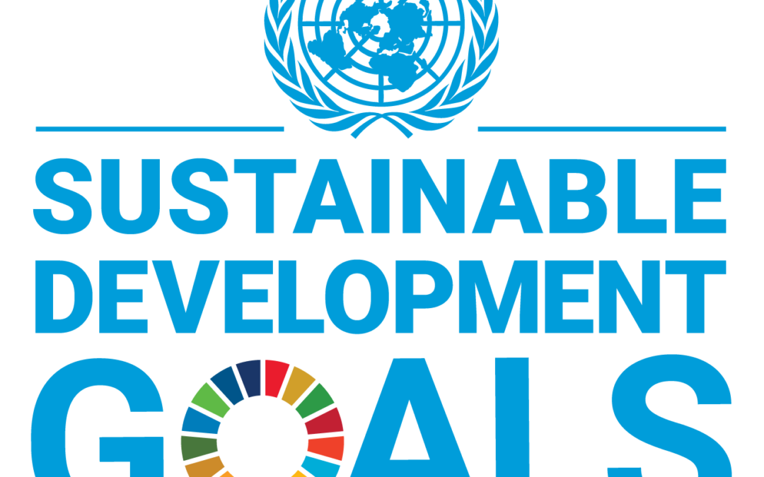 The United Nations Sustainable Development Goals: How can you do your bit?